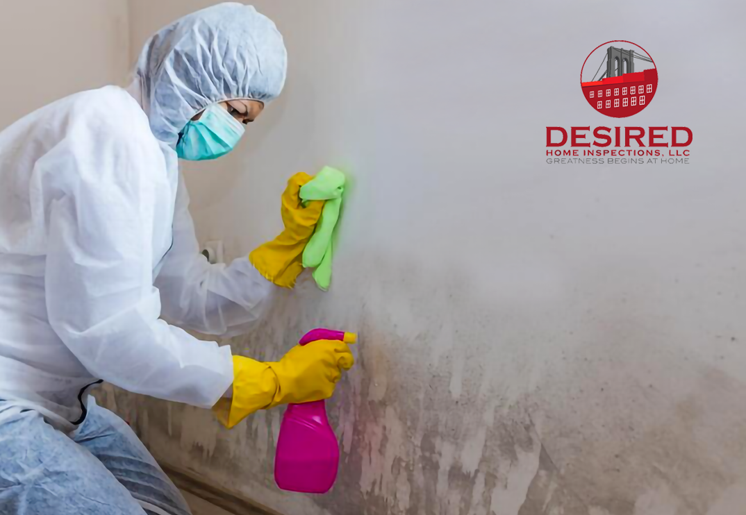 Residential Mold Inspection