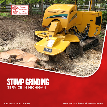 Stump Grinding Service in Michigan