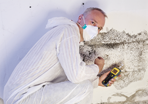 mold inspection and testing in Brooklyn